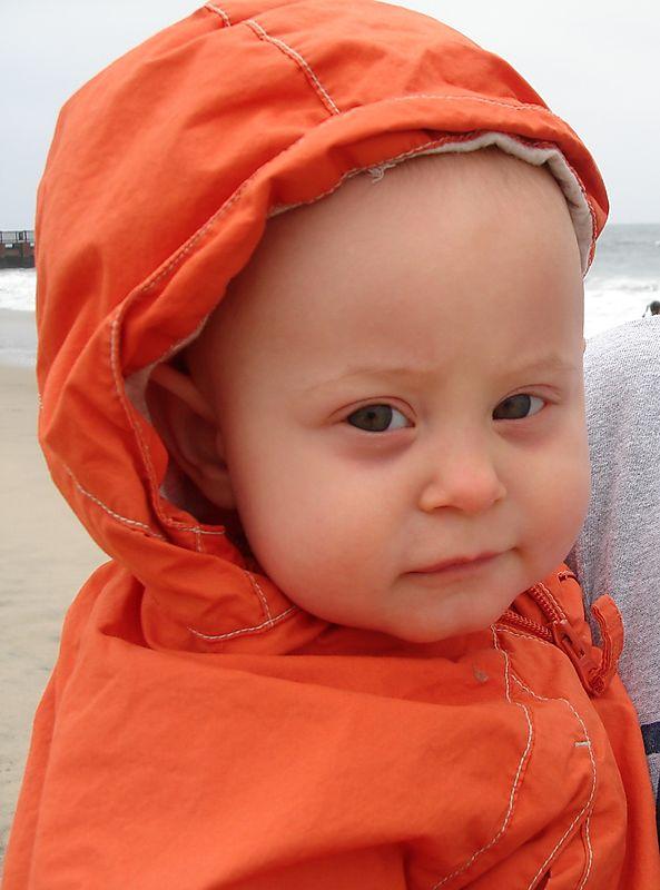 Piper_beach
